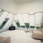 Porterhouse pleated blinds